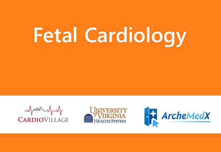 Fetal Cardiology Series